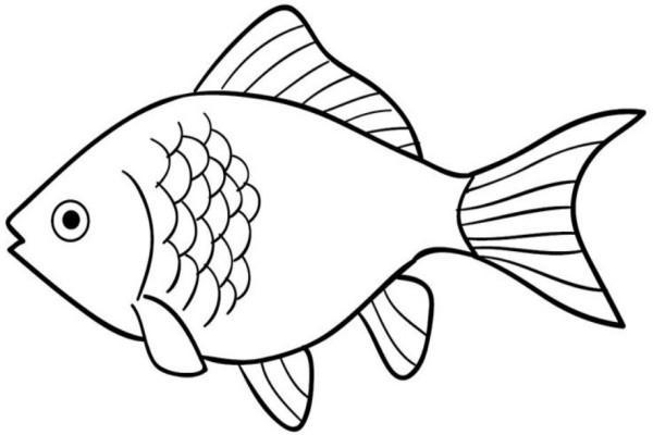 Fish Coloring Pages For Android Apk Download