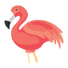 Flamingo Animator icono