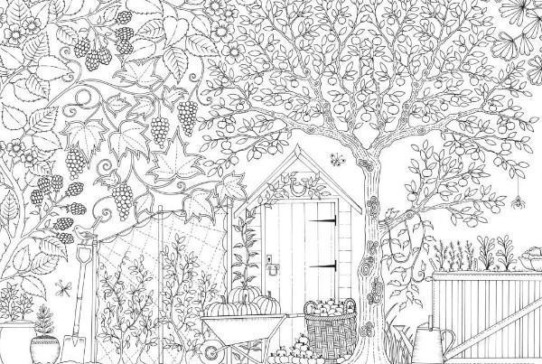 Livro Para Colorir Jardim Para Android Apk Baixar