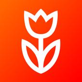Flowwow icon