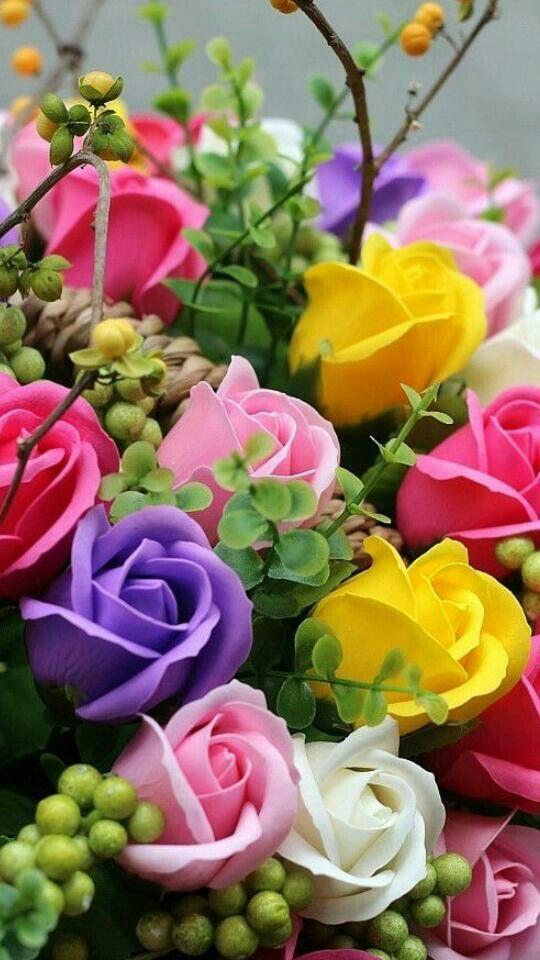 Beautiful flowers and roses pictures Gif for Android - APK Download