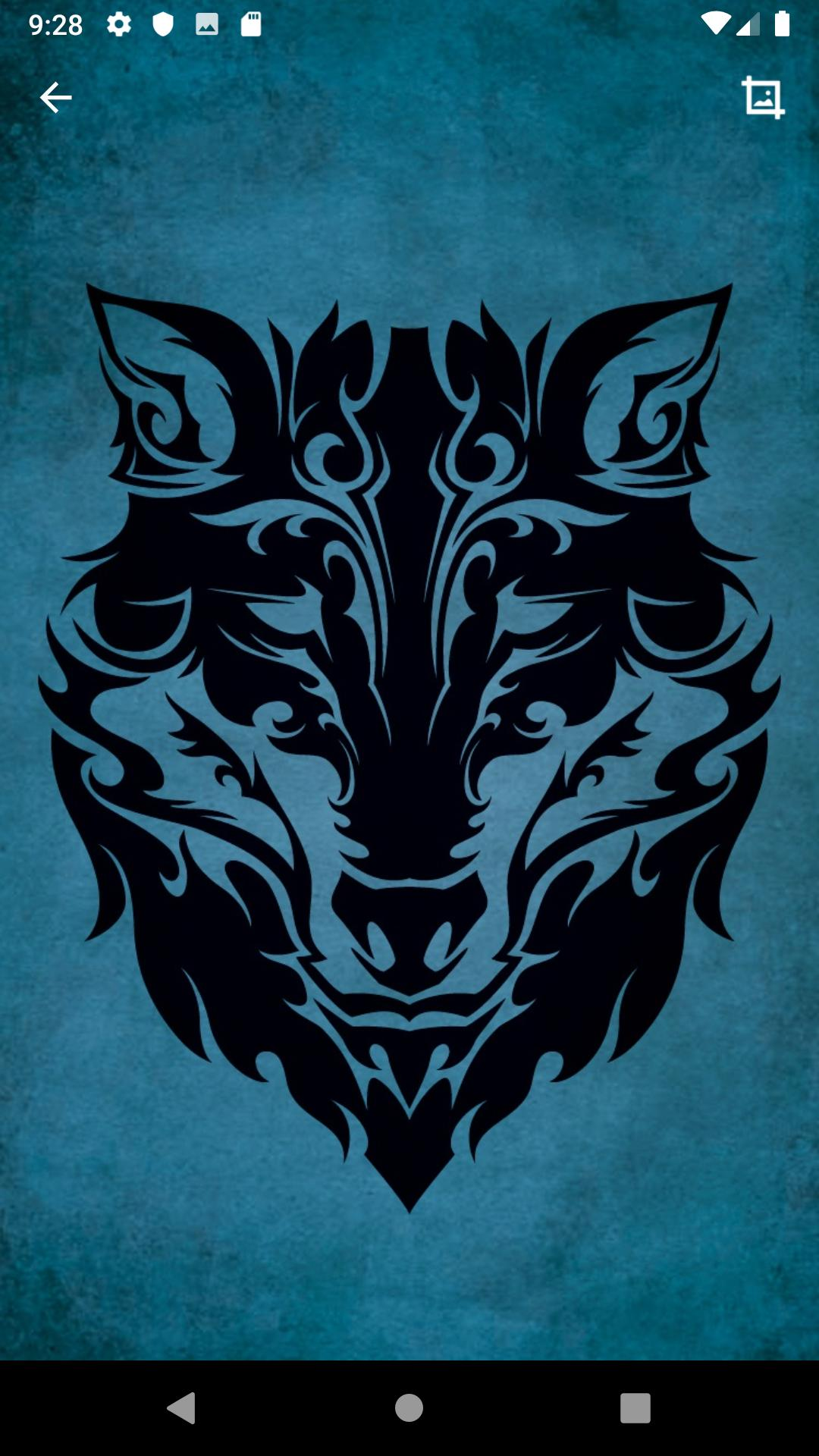 Wolf Wallpaper Hd For Android Apk Download