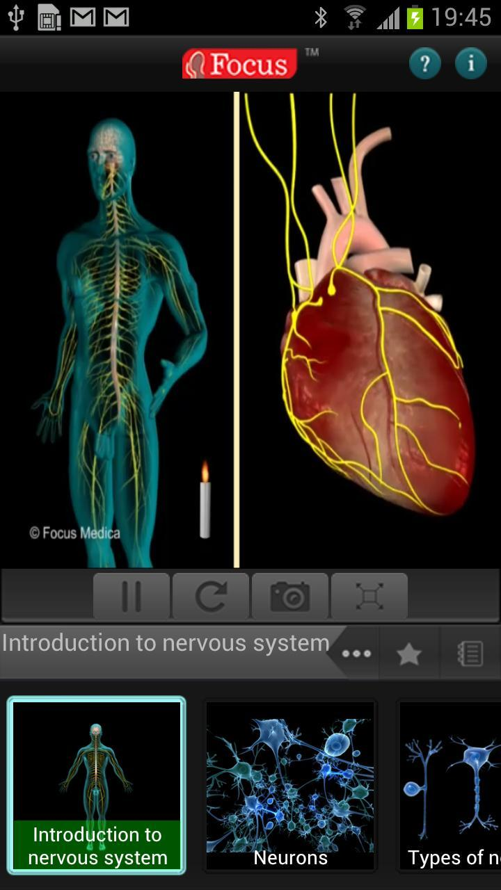 Anatomy and Physiology-Animated for Android - APK Download