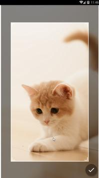 Kawaii Kitten Wallpapers Art screenshot 3