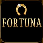 Play Wheel Fortuna! icon