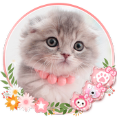 Unduh 930 Wallpaper Animasi Kucing HD Gratid