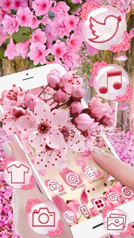 Pink Sakura Flower For Android Apk Download