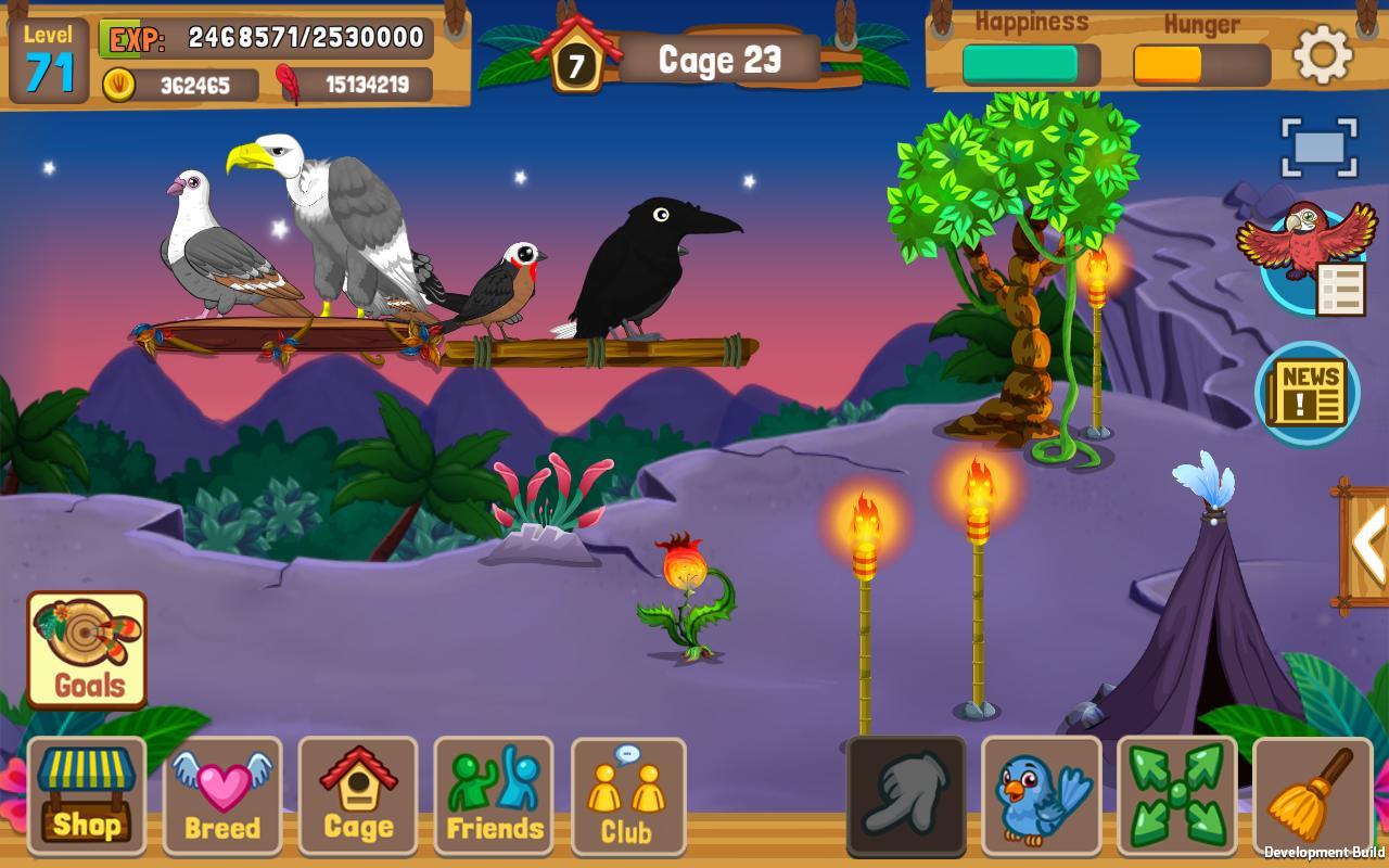 Amazon.com: Little Live Pets Bird: Toys & Games  Pet Bird Games