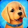 Dog Town: Juego de Tienda de Mascotas y Perros icono