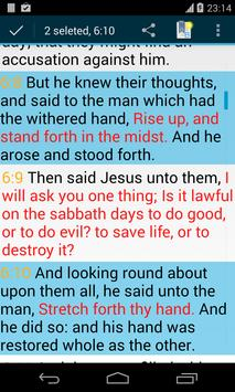 Bible KJV screenshot 5