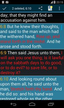 Bible KJV screenshot 6