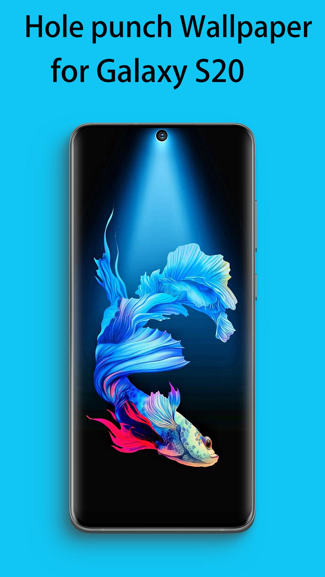Creative Punch Hole Wallpaper For Galaxy S20 For Android Apk Download