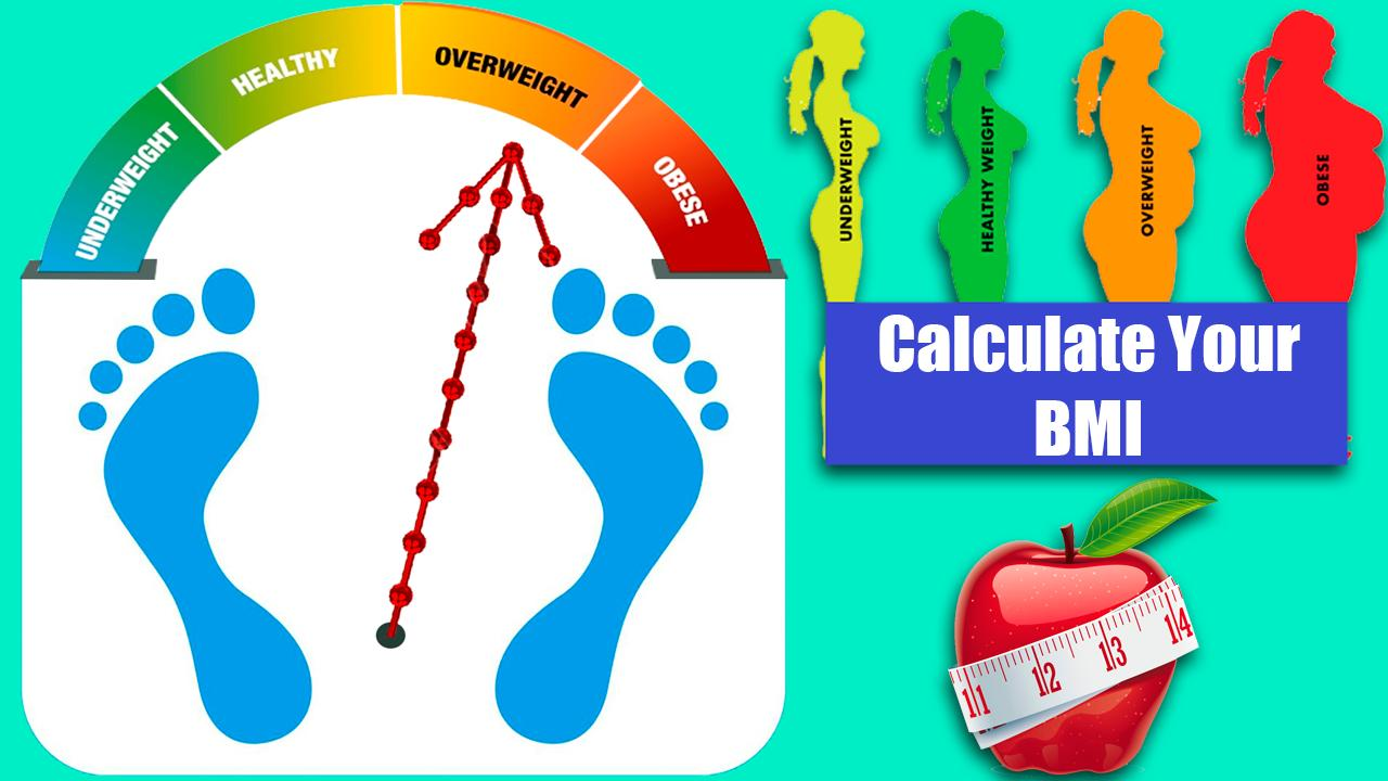 New BMI Calculator 20 for Android   APK Download
