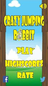 Jumping Rabbit Adventure poster