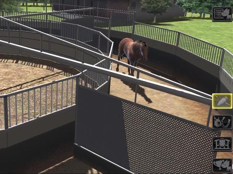 iHorse: The Horse Racing Arcade Game screenshot 5