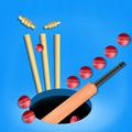 Color Cricket.IO- Hole 3D