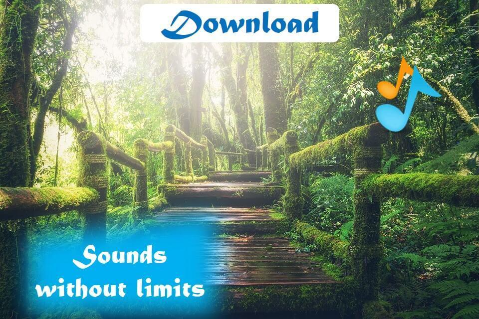 Rain forest sounds for android apk download.