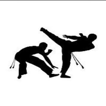 capoeira martial movement screenshot 1