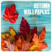 Autumn Wallpapers and Backgrounds HD icon