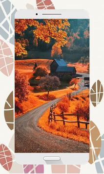 Autumn Wallpapers and Backgrounds HD screenshot 4