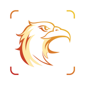 Picture Bird ícone