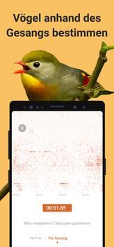Picture Bird Screenshot 2