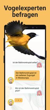 Picture Bird Screenshot 5