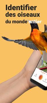 Picture Bird Affiche