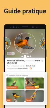 Picture Bird capture d'écran 3