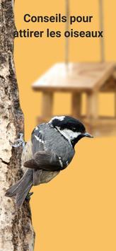 Picture Bird capture d'écran 4