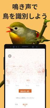 Picture Bird スクリーンショット 2
