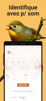 Picture Bird imagem de tela 2