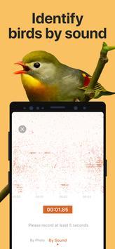 Picture Bird ảnh chụp màn hình 2