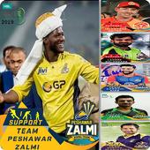 Cricket Profile Picture 2020 icon
