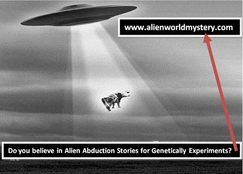 Alien World Mystery screenshot 4