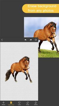 Pro Knockout-Background Eraser & Mix Photo Editor plakat