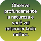 Frases De Natureza For Android Apk Download