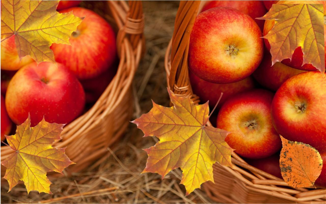 Apples Autumn Live Wallpaper For Android Apk Download