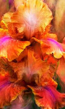 Irises Wild live wallpaper screenshot 2