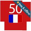 프랑스어를 배우십시오 아이콘