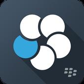 BlackBerry Work icône