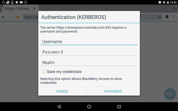 BlackBerry Access capture d'écran 12