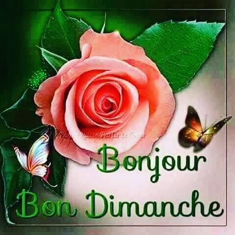 Bonjour Image Hd Gratuit для андроид скачать Apk
