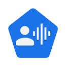 Voice Access aplikacja