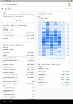 Google Analytics screenshot 17