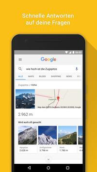 Google Screenshot 1