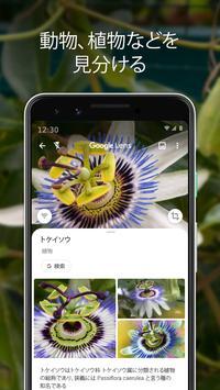 Google レンズ スクリーンショット 2