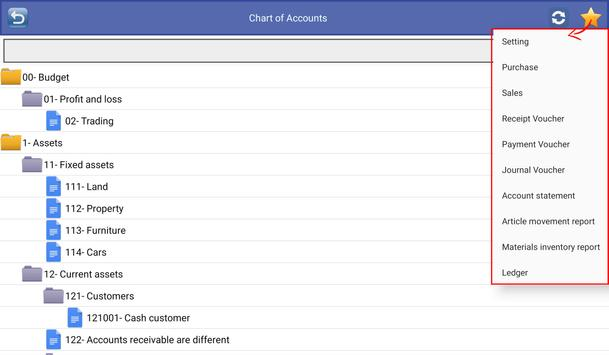 Business Accounting Screenshot 2