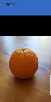 Fruit Classifier screenshot 1