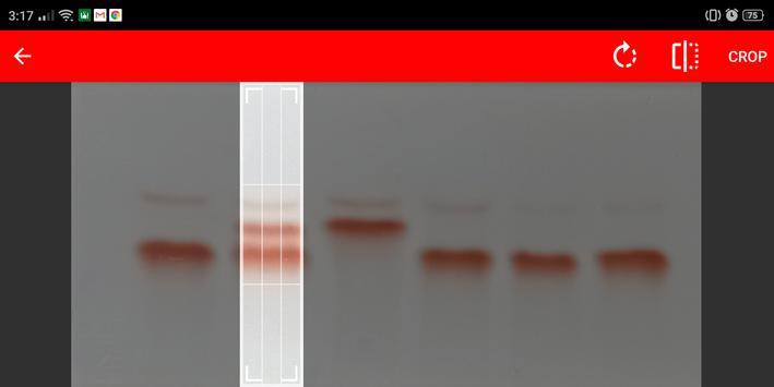 Thal-IT screenshot 1